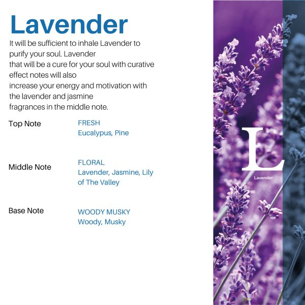 رایحه-لاوندر